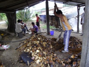 Hand-hewn hardwood mallet used to pulverize baked agave in Santa Catarina Minas, Oaxaca